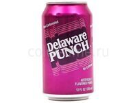 Delaware Punch 0,355 ml (США)